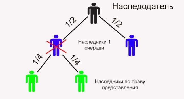 Изображение - Наследование по праву представления и наследственная трансмиссия Nasledovanie-po-pravu-predstavleniya-11-e1494509493608